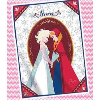 Disney - アナと雪の女王 フランネルbig毛布