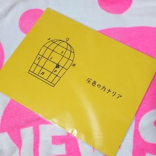 NEWS - ☆★NEWS増田貴久くん舞台「灰色のカナリア」パンフレット★☆