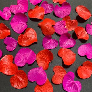 ハートリーフ レッド ピンク 30枚 ハーバリウム花材(ドライフラワー)