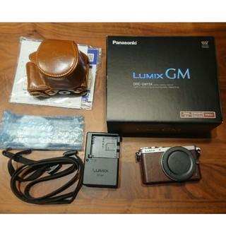 Panasonic - Panasonic Lumix DMC-GM1S