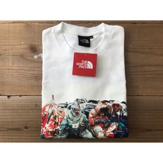 THE NORTH FACE - Mサイズ ノースフェイス トランス アンタークティカ Tシャツ