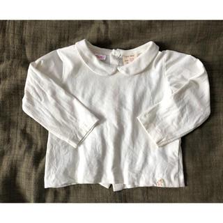 ZARA KIDS - 美品 襟付きトップス ZARA baby 9-12m 長袖 コットン 80cm