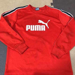 puma  プーマ 赤 長袖 プラシャツ 140cm