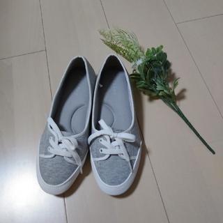 エニィファム(anyFAM)のレディース シューズ グレー 白 Sサイズ 新品 ひも靴 上履き (スニーカー)