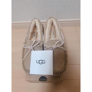 UGG - 【新品未使用】 UGG DAKOTA ダコタ 24センチ