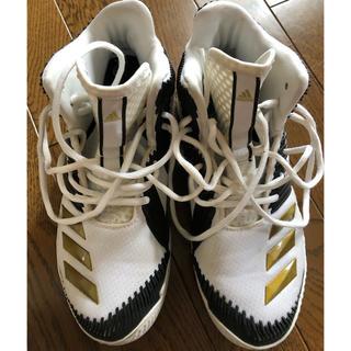 adidas - アディダス バスケットシューズ 25.5cm