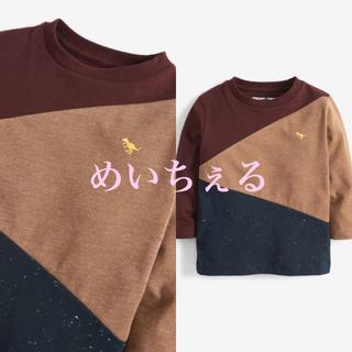 ネクスト(NEXT)の【新品】next プラム 長袖カラーブロックTシャツ(ヤンガー)(シャツ/カットソー)