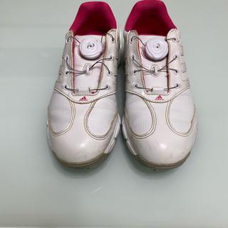 adidas - ゴルフシューズ アディダス レディース 22cm