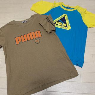 【PUMA】キッズ 150cm Tシャツ 2枚 日本製