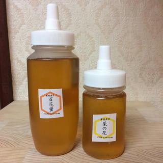 蜂蜜の日【非加熱・生はちみつ】百花蜜250g&菜の花150g&れんげ50g(3本