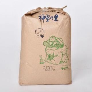 さわのはな 玄米10キログラム(米/穀物)