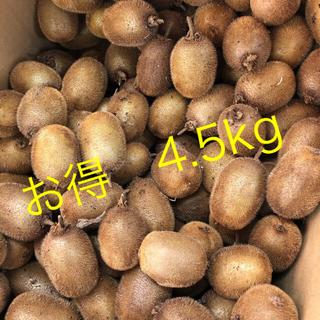 【お得】キウイ「ヘイワード」中玉4.5kg★自然農法・オーガニックフルーツ(フルーツ)