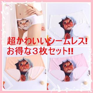 ショーツ レディース セット 猫 3Dプリント シームレス  【3枚セット】(ショーツ)
