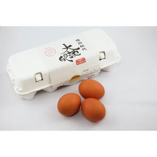 大地の卵 20個 信州松代平飼い有精卵 ラクマパック対応(その他)