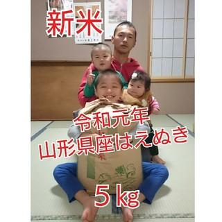 新米 令和元年 山形県産 はえぬき 1等米 5㎏