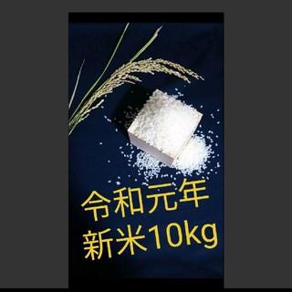【令和元年 新米10kg】農家のコシヒカリ
