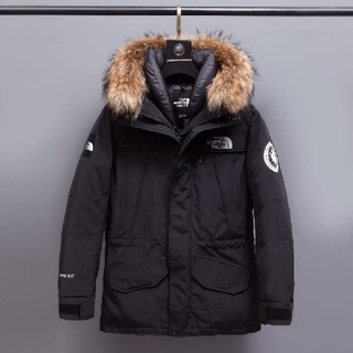 THE NORTH FACE - The North Face アンタークティカパーカ S