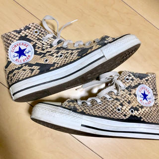 CONVERSE - converse/パイソン/ハイカット