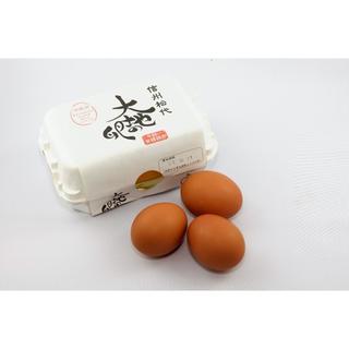 大地の卵 48個 信州松代平飼い有精卵 ラクマパック対応(その他)