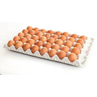 大地の卵 120個 割れ保証6個含む ラクマパック対応(その他)