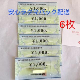 ビックカメラ株主 お買い物優待券 6000円分(ショッピング)
