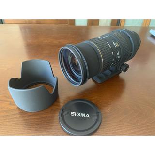 SIGMA - Canon用 SIGMA 50-500mm f4-6.3 EX APO HSM