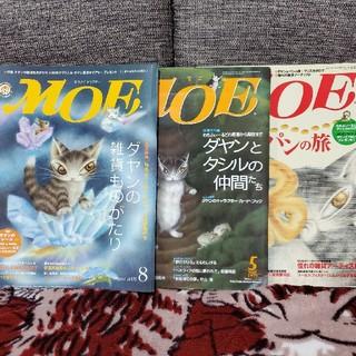 ハクセンシャ(白泉社)のわちふぃーるど MOE 2005年9月号 ダヤン(アート/エンタメ/ホビー)