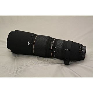 SIGMA - SIGMA APO 100-300mm F4 EX DG HSM 中古美品