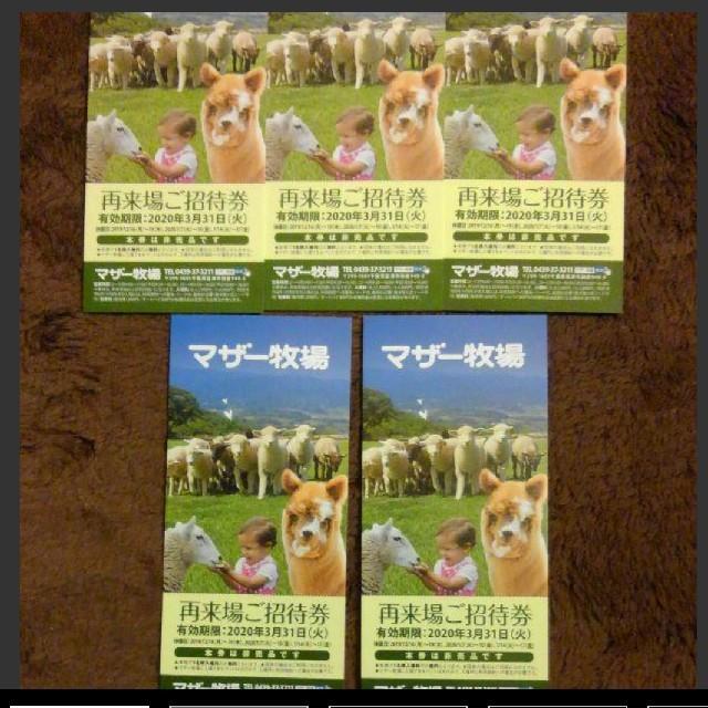マザー牧場無料券 チケットの施設利用券(遊園地/テーマパーク)の商品写真