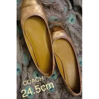 コーチ(COACH)のCOACH 美品❣️チェルシー レザーバレエフラットシューズ24.5(バレエシューズ)