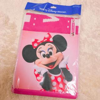 Disney - ディズニー 実写 フェイスタオル ミニー デイジー
