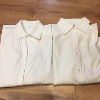 UNIQLO - 白シャツ2枚
