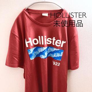 ホリスター(Hollister)の【未使用品】ホリスター Tシャツ Mサイズ(Tシャツ/カットソー(半袖/袖なし))