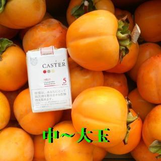 高知産 大玉渋柿 20Kg つるし柿(フルーツ)