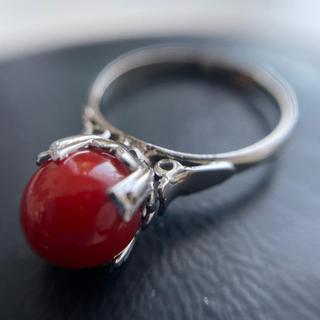 昭和レトロ 血赤珊瑚 silver 9号 リング 送料込み(リング(指輪))