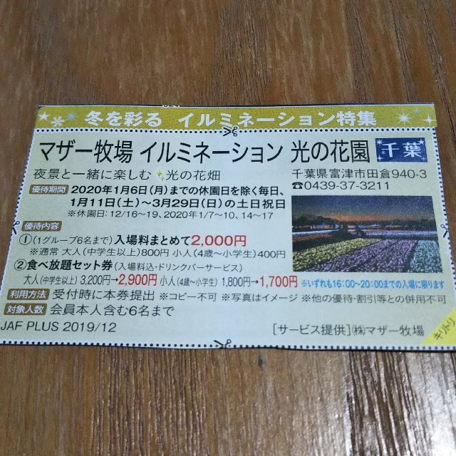 マザー牧場 イルミネーション 光の花園 チケットの施設利用券(遊園地/テーマパーク)の商品写真