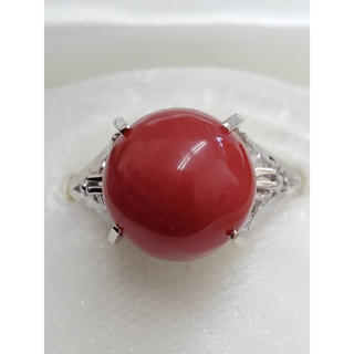 プラチナ血赤サンゴリング(リング(指輪))