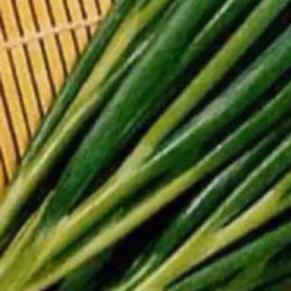 無農薬 九条ネギ苗 5本677円(野菜)