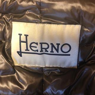 ヘルノ(HERNO)のヘルノ ダウンコート 追加画像(ダウンコート)