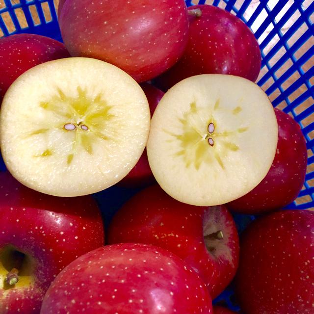 りんごジュース りんご 食品/飲料/酒の食品(フルーツ)の商品写真