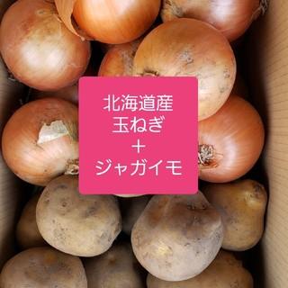 北海道産【玉ねぎ】+【じゃがいも(とうや)】訳あり品5キロ