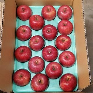 10kgりんご 贈答用 フジ Sサイズ
