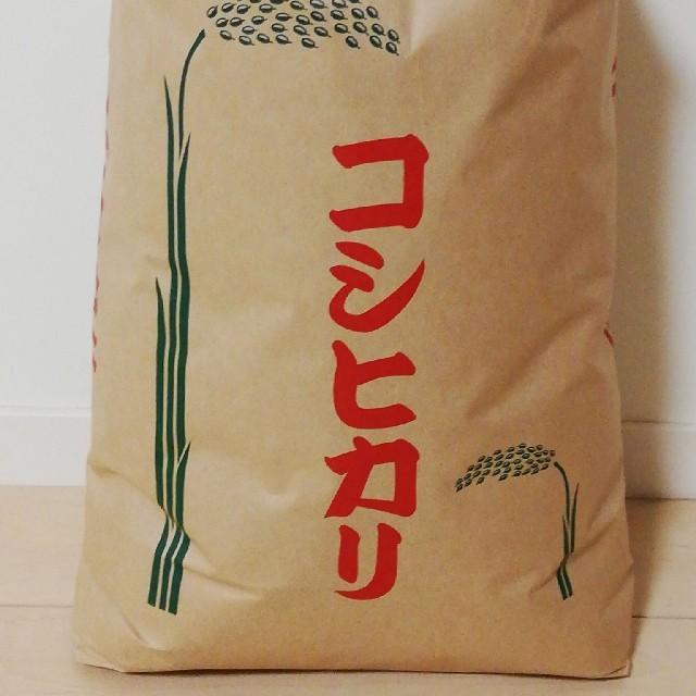 【コシヒカリ】精米10kg 格安訳あり令和元年産新米  食品/飲料/酒の食品(米/穀物)の商品写真