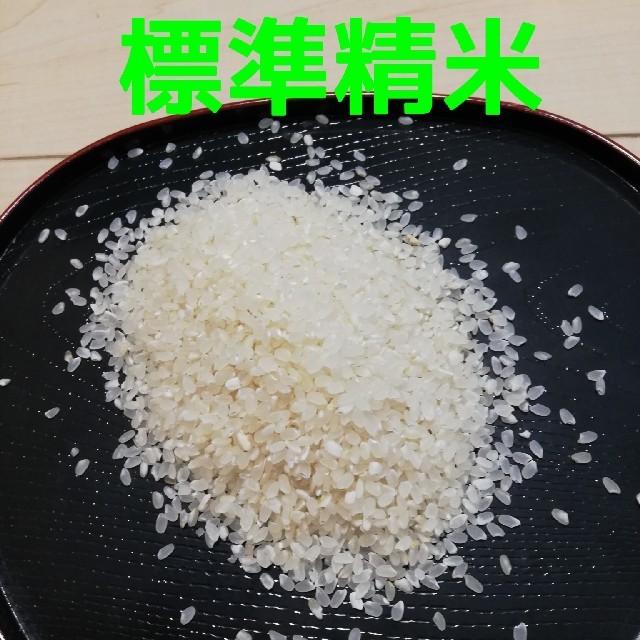 【コシヒカリ】精米20kg 格安訳あり令和元年産新米  食品/飲料/酒の食品(米/穀物)の商品写真