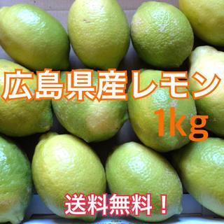 レモン 広島県産 化学農薬不使用 大崎上島産 瀬戸内 グリーンレモン 1kg(フルーツ)
