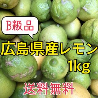 B級品レモン 化学農薬不使用 大崎上島産 広島 瀬戸内  1kg(フルーツ)