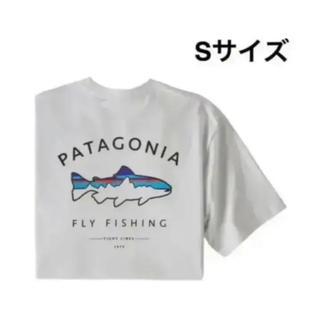 patagonia - Patagonia   フレームド・フィッツロイ・トラウト・レスポンシビリティー