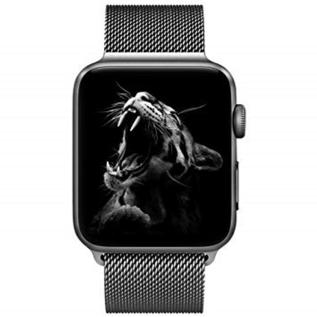 【最終★在庫】apple watch バンドの通販