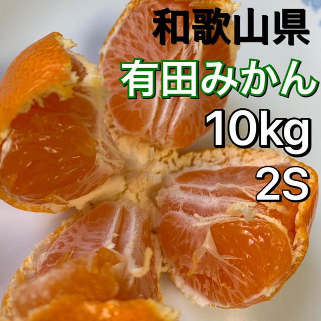 有田みかん 和歌山県産 早生みかん 10キロ 2S小玉サイズ 食品/飲料/酒の食品(フルーツ)の商品写真