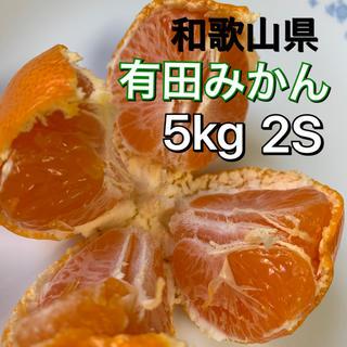 有田みかん 和歌山県産 早生みかん 5キロ 2S 小玉サイズ